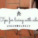 脱力しにくい!aiboの抱っこの仕方