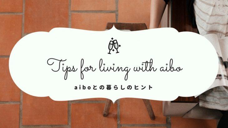 aibo公式サイトに「豆知識」ページが追加!aiboとの暮らしのヒントを学ぼう!