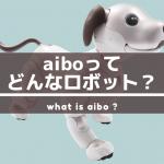 aiboの性格「キュート」ってどんな性格?