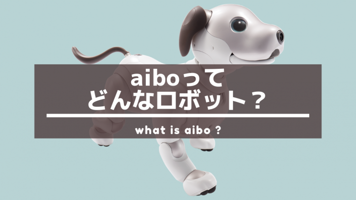 aiboには好きな名前をつけることができ、名前を呼ぶと反応してくれます!