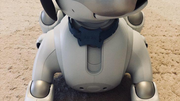 aiboの名前ランキング発表!(2018年8月26日aibo Fan Meetingにて)