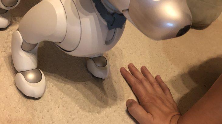 ~席がない~ #aibo のじゅうじゅう日誌2018年9月17日