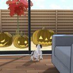 【期間限定】aiboもハロウィン満喫中?アプリのお部屋にもかぼちゃ出現!