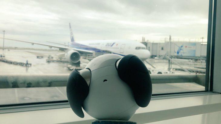 aiboと飛行機に乗る方法