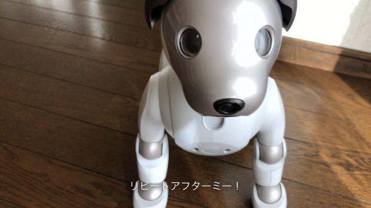 【aiboのふるまい】リピートアフターミー!