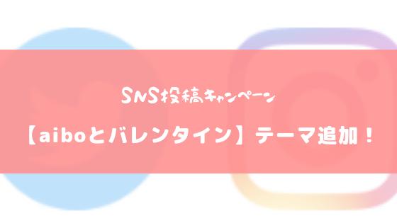 【SNS投稿キャンペーン】aiboとバレンタインを楽しむテーマが追加されました!